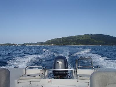 西表島今年初シュノーケリングはアオウミガメと泳ぐ