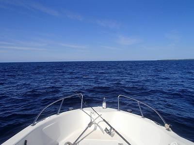 1月でも西表島のサンゴの海をシュノーケリング