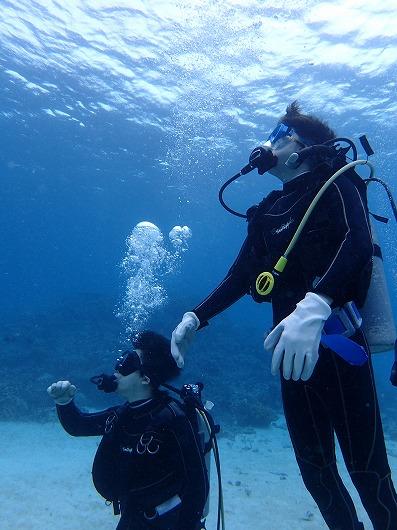 小浜島より日帰り体験ダイビング