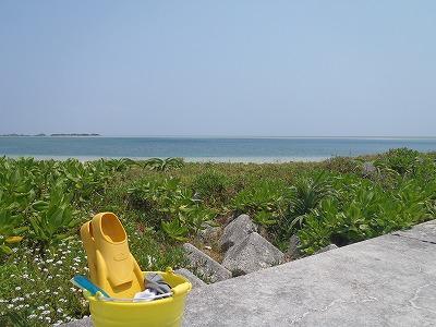 西表島のビーチからシュノーケリング