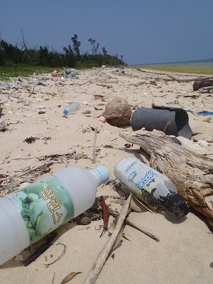 西表島のビーチの漂着ゴミ