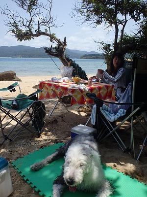 西表島で釣りとシュノーケリングとビーチライフで楽しむ