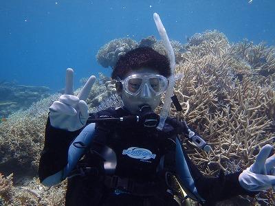 りく君と西表島で体験ダイビング!