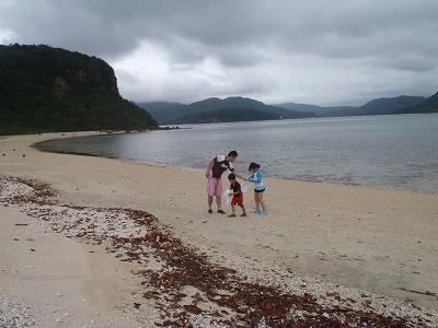 プライベートビーチ貝拾い