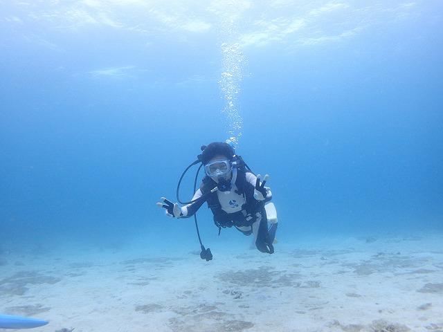 奥西表シュノーケリングと体験ダイビング貸切ボートチャーターツアー