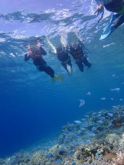 ねーさんグループの修学旅行は石垣島から貸切ボートチャーターシュノーケリングツアー