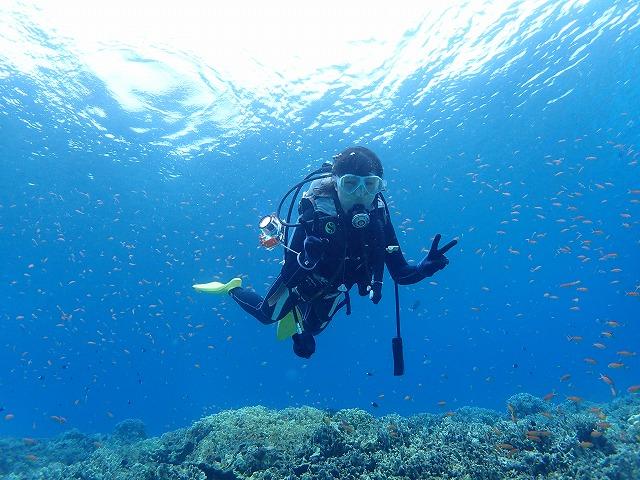 ⒱奥西表貸切ボートチャーター体験ダイビング