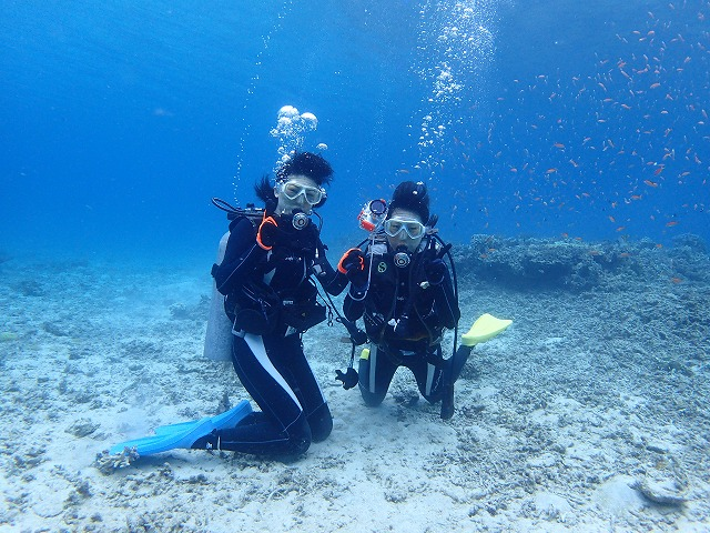 奥西表貸切ボートチャーター体験ダイビング