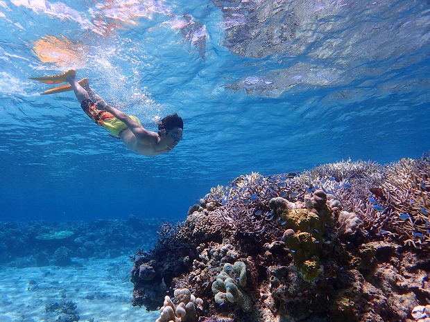 メラマウリゾート奥西表貸切ボートチャーターシュノーケル&釣りツアー