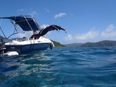 西表島に飛ぶ