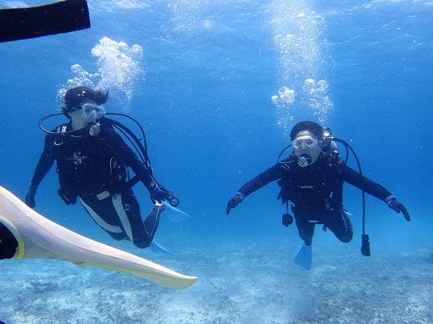 奥西表貸切ボートチャーターシュノーケル&体験ダイビングツアー