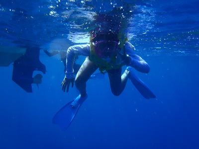 西表島でプライベートツアーならメラマウリゾート~海がめと泳ぐ~