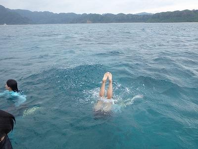 4日間貸切ボートチャーターシュノーケルツアー