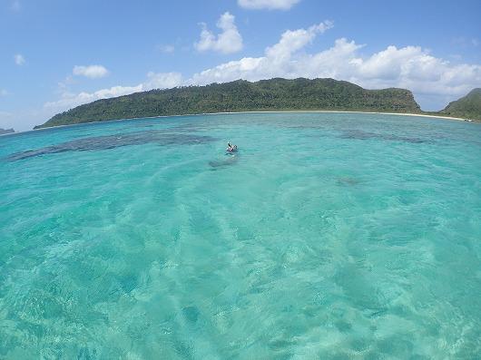 ~西表島のジャングルと海を貸切コース~