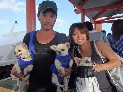 石垣島より貸切ボートチャーターで大切なペットさんとのんびりシュノーケリングin西表島