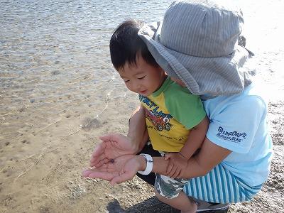 こうちゃんファミリーのんびり貸切ボートチャーター西表島ツアー ~2日目マングローブの干潟編~