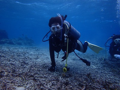 寒かった~~~!けどメッチャ近くで海がめ体験ダイビング!