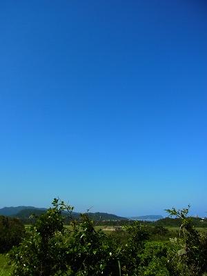もの凄くいいお天気の西表島